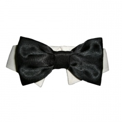 Papillon con colletto SATIN (nero)