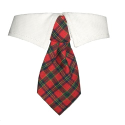 Cravattina XMAS SHIRT COLLAR