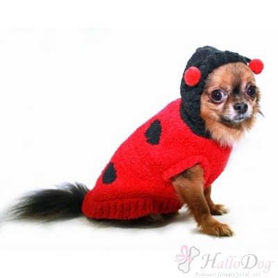 Maglioncino LADY BUG