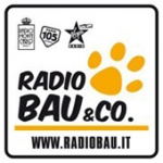 Radio BAU & CO®
