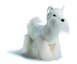 West Highland Terrier (versione A)